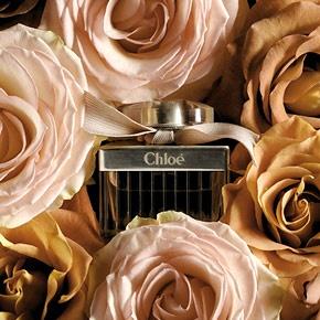 chloé rosa